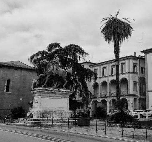 verde pubblico. IL COMUNE TENTERÀ DI RISANARE LA PALMA DI PIAZZA GARIBALDI